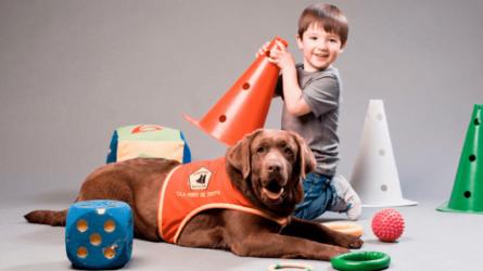 Criar a un perro de asistencia