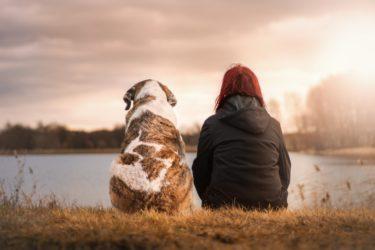 Beneficios de Tener una Mascota