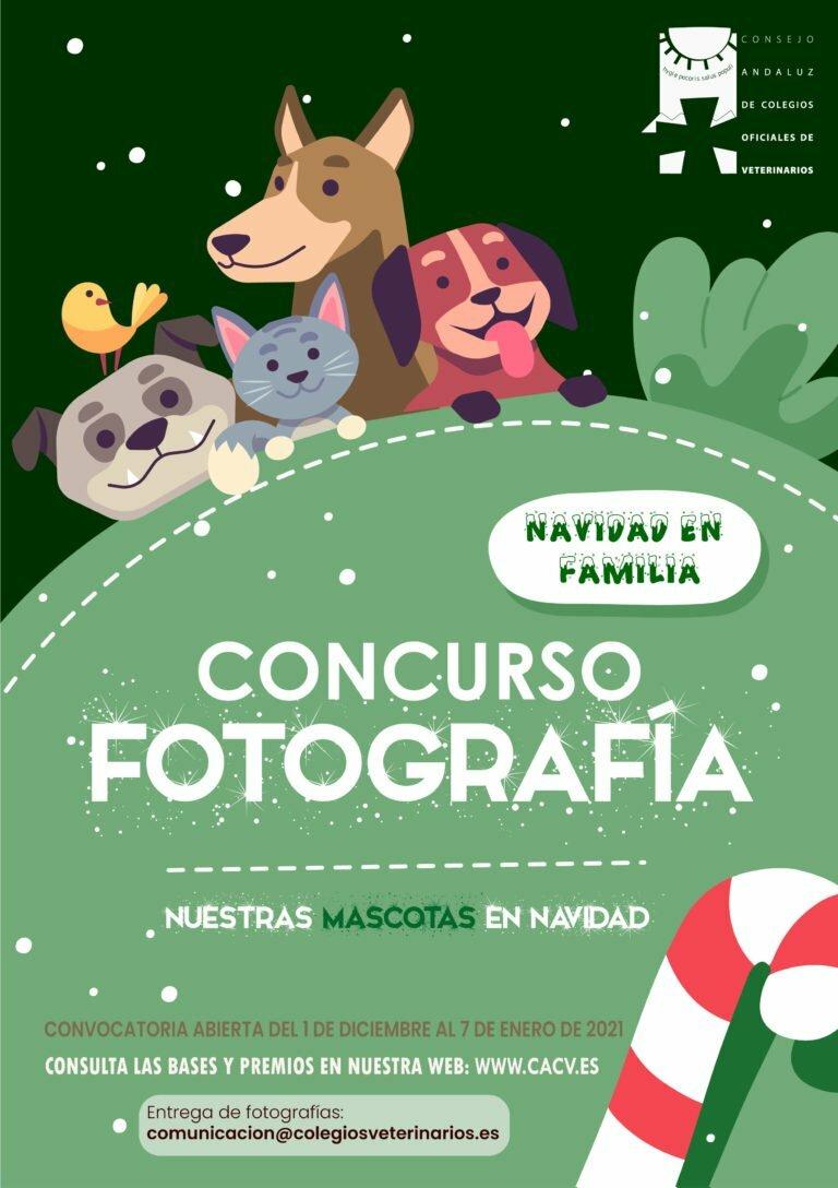 concurso-fotografico-navideno