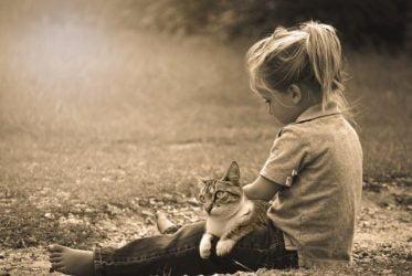 Gatos y niños con autismo